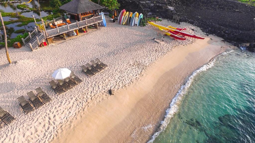 A Big Island puoi trovare le tartarughe sulla spiaggia