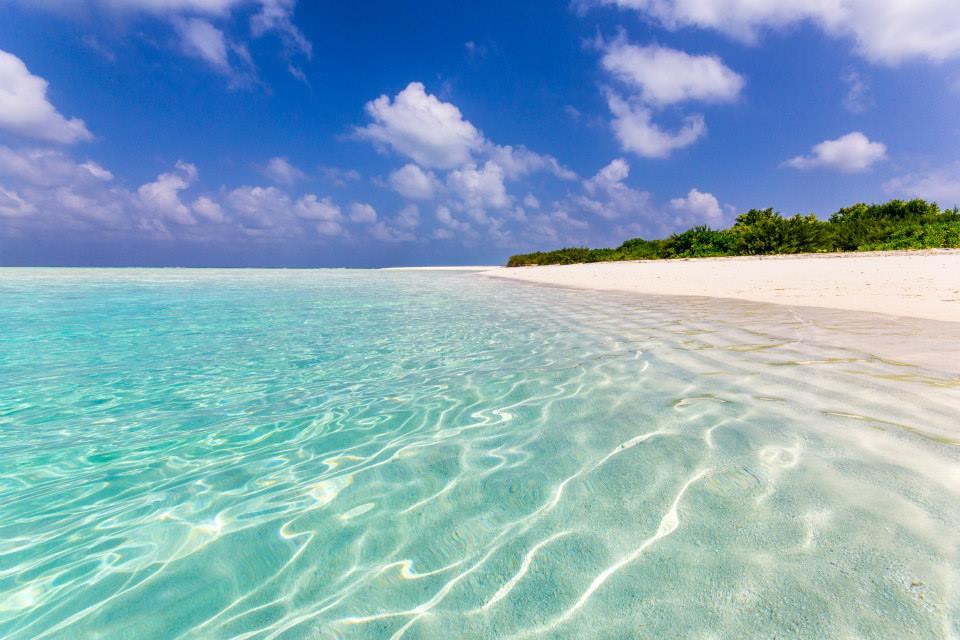 Il bruttissimo mare delle Maldive