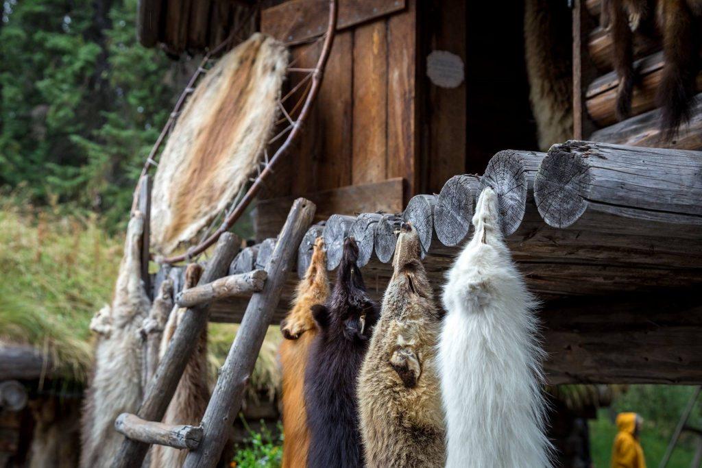 Fairbanks, Alaska: cosa fare, dove mangiare, cosa vedere in 2 giorni. Riverboat Discovery Tour. Villaggio Athabascan (tribù Chena -Athabaskan Tribe)