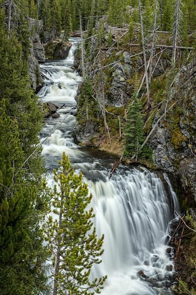 Yellowstone in un giorno: tappe, itinerario e tutte le informazioni utili